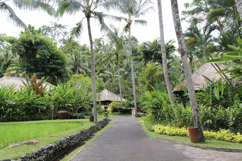 four seasons resorts ubud sayan