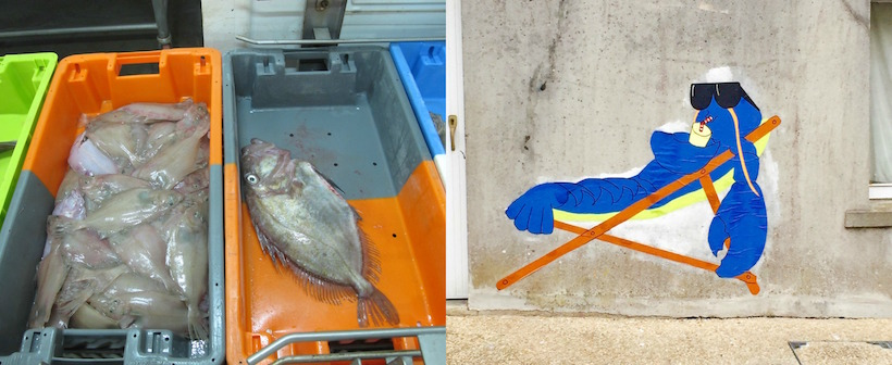bretagne port fish market
