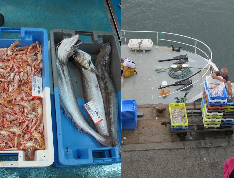 brittany fish market