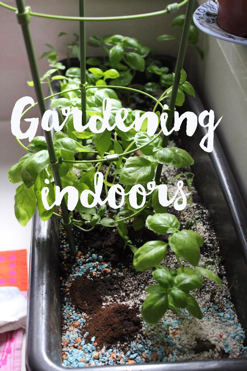 gardening indoors copy1