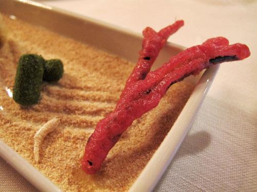 seaweed-coral-akelare-ss