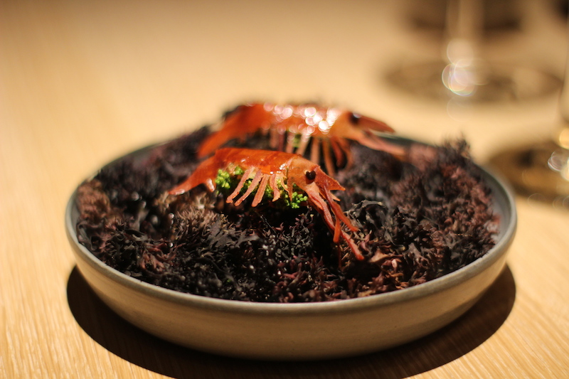 noma seafood menu